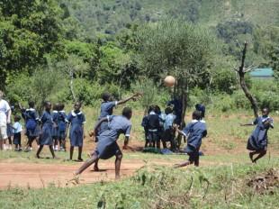 Primary School 04
