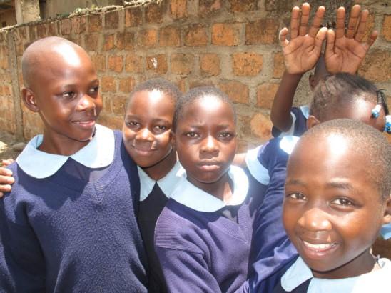Primary School 31